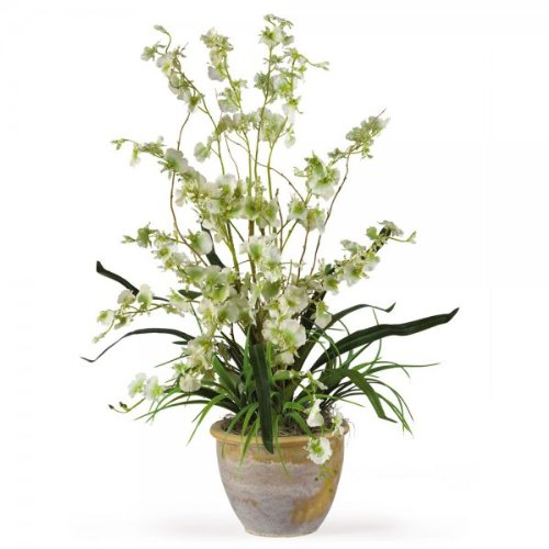 Dancing Lady Orchid Arrangements (Green) (26''H x 15''W x 15''D) by Nearly Natural