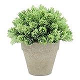 Velener Artificial Provence Flowers Arrangements in Pots for Home Decor (Green)