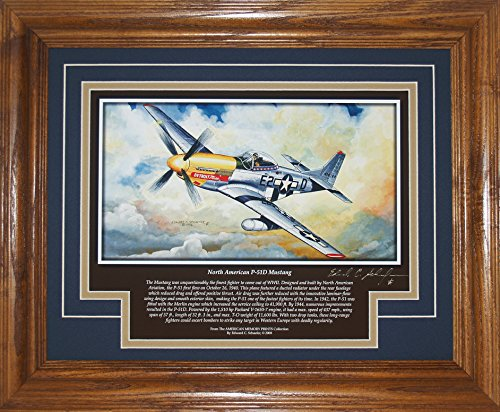 BF North American P-51D Mustang with History Framed 13