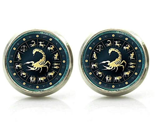 DianaL Boutique Silver Tone Glass Cabochon Zodiac Horoscope Earrings Stud (Scorpio) ()