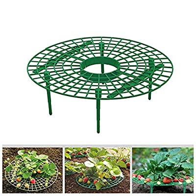 RICH-Po Strawberry Supports,Plant Support 5 Pcs,Great for Keeping Fruit Elevated to Avoid Ground Rot