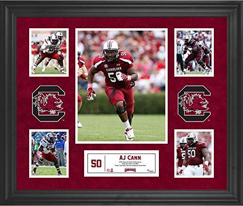 "AJ Cann South Carolina Gamecocks Framed 23"" x 27"" 5-Photo..."