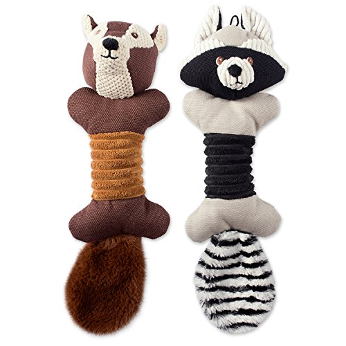 Bone Dry DII Soft Bone Body Squeaking Pet Toy, 2 Pieces Jack Squirrel & Roscoe Raccoon Woodland Friends Toy for Small, Medium and Large Dog
