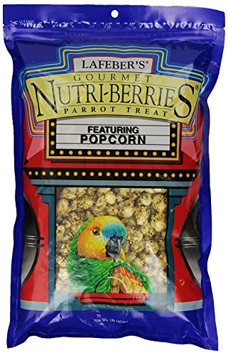 LAFEBER'S Gourmet Popcorn Nutri Berries Treat, Made with Non-GMO and Human-Grade Ingredients, for Parrots, 1 lb