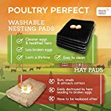 Poultry Perfect Chicken Nesting Pads x6 | For