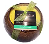 Hawaii Bubble Shack Coconut Candles 4 Pack Juicy Pineapple Scented