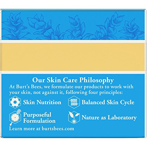 513wPVeNrLL - Burt's Bees Intense Hydration Night Cream, Moisturizing Night Lotion, 1.8 Ounces