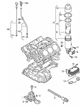 Amazon Com Oil Filter Kit With Drain Plug Seal Audi 06e115562a