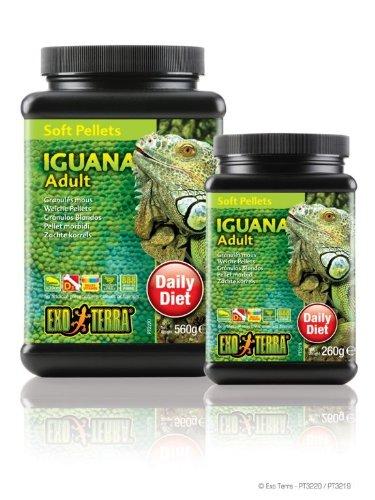 Exo Terra Soft Adult Iguana Food, 9.1-Ounce