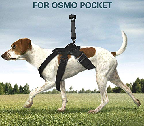 iKNOWTECH Pet Dog Harness Chest Strap Belt Mount Shoot Picture for DJI OSMO Pocket, for GoPro Dogs Mount Harness Adjustable Chest Strap Mount Belt Fetch for (Best Gopro Harness For Dogs)