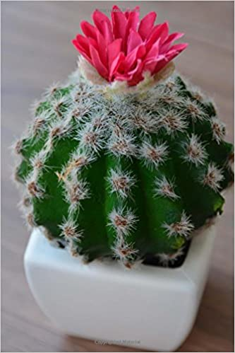 Buy Blooming Cactus in a Pot Plant Journal Book Online at Low Prices