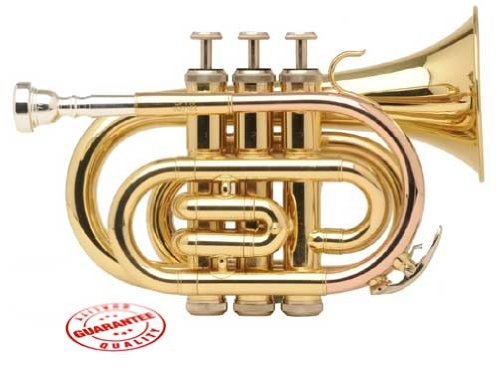 Fever Lacquer Pocket Trumpet With Case, WALPOKL