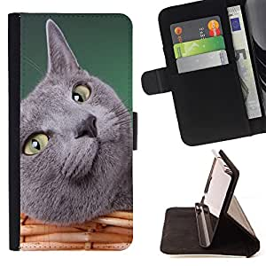 Devil Case- Estilo PU billetera de cuero del soporte del tir¨®n [solapa de cierre] Cubierta FOR LG Optimus G2 D800 D801 D802 D803 VS980 F320- Cat Cute Kitty
