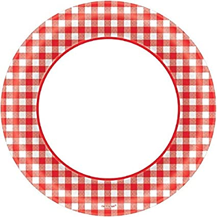 Amscan Disposable Classic Picnic Red Gingham Border Round Plates Party Tableware 40 Pieces Made  sc 1 st  Amazon.com & Amazon.com: Amscan Disposable Classic Picnic Red Gingham Border ...