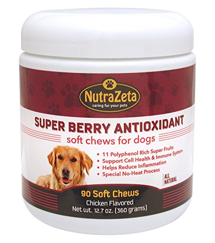 Acerola Chew (Natural Anti Inflammatory Joint Supplement for Dogs - Premium Antioxidants for Dogs to help ease Hip & Joint discomfort + Immune System Boost and Cell DNA Health Protection - 90 soft chews - Made USA)