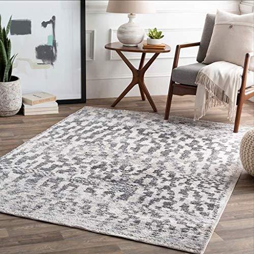 (Concho Updated Moroccan Farmhouse 2' x 3' Rectangle Modern 100% Polyester Medium Gray/Black/White/Light Gray Area Rug)