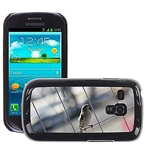 Etui Housse Coque de Protection Cover Rigide pour // M00134001 Pájaro Gorrión Sperling Cerrar pluma // Samsung Galaxy S3 MINI i8190