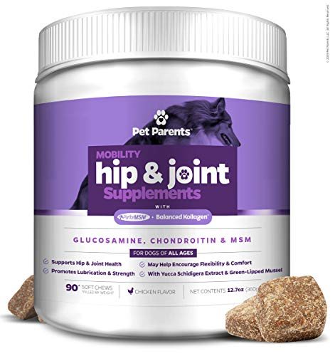 Pet Parents USA Dog Joint Supplement - Glucosamine for Dogs 4g 90c - Dog Arthritis Supplement - Glucosamine Chondroitin for Dogs + MSM for Dogs & Green Lipped Mussel - Hip & Joint Supplement for Dogs (Best Hip And Joint Supplements For Dogs)