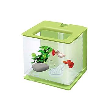 Suna Acuario De Escritorio Mini Plástico Creativo Ecológico Agua Libre Lazy Goldfish Tanque (Verde): Amazon.es: Productos para mascotas