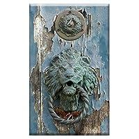 Wall Plate Cover - Door Blue Door Knocker Knocker Lion Brass Old