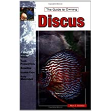 The Guide to Owning Discus