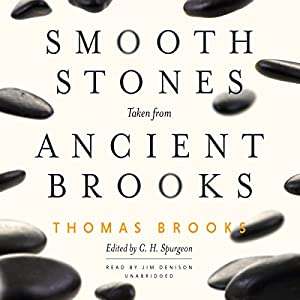 Smooth Stones Taken from Ancient Brooks Audiobook