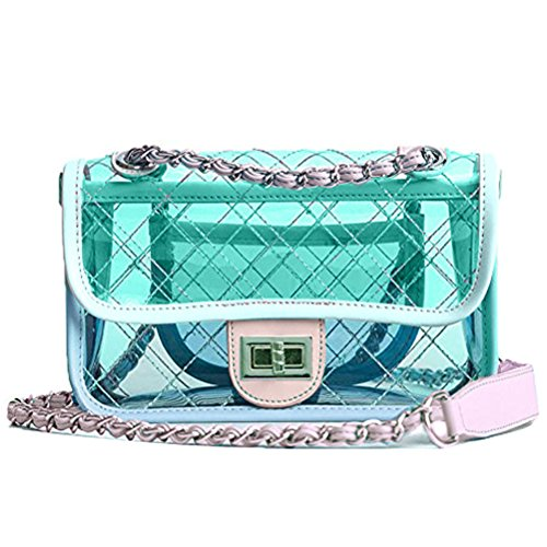 Donalworld Girl Clear Bag Small Flap Quilted Chain Strap Crossbody Bag Mt