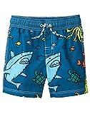 Gymboree Boys' Baby Swim Trunks