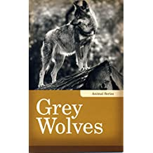 Grey Wolves (Animals)