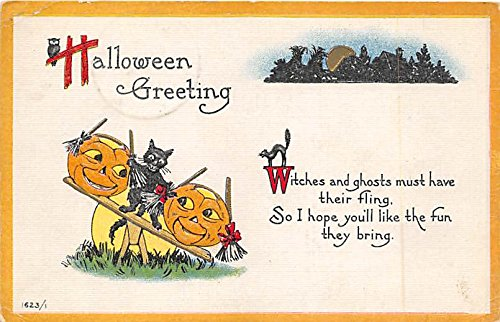 2 Pumpkins, Black Cats Halloween Postcard Old Vintage Post Card ()