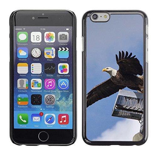 """Premio Sottile Slim Cassa Custodia Case Cover Shell // F00009916 Aigle chauve // Apple iPhone 6 6S 6G PLUS 5.5"""""""