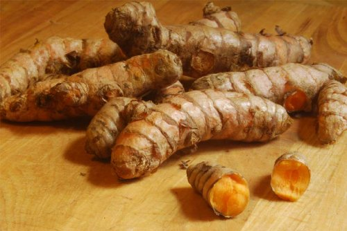 Bhanu Fresh Yellow Turmeric Roots 1 Lb *High Quality*
