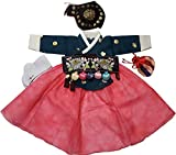 Hanboks Korean Traditional Costumes Girls Babies Dress 1st Birthday DOLBOK hg1003/f