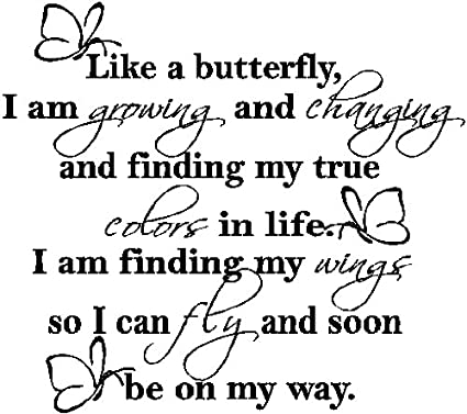 Like A Butterflybutterfly Wall Quote Wall Lettering Words
