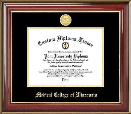 Amazon com : Laminated Visuals Medical College of Wisconsin