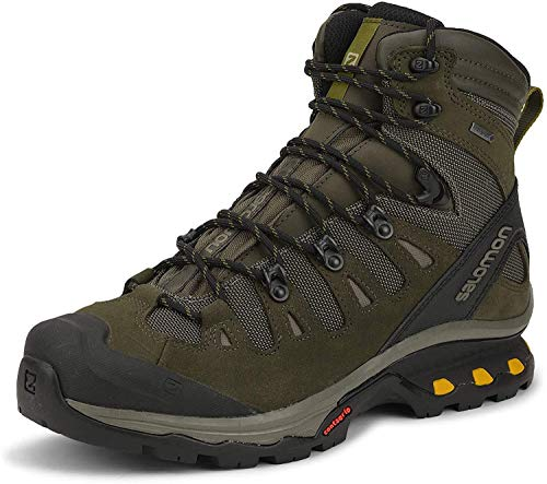 Salomon Men's QUEST 4D