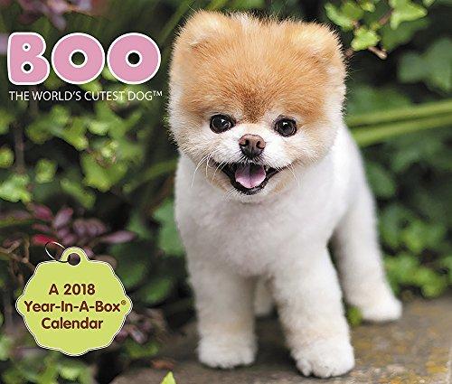 2018 Boo Calendar (Year-In-A-Box)