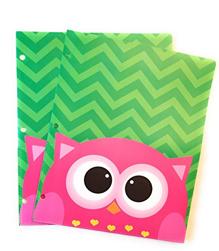 Pocket Buddies Durable Plastic Folders with Extra Front Pocket - Set of 2 (Owl)]()