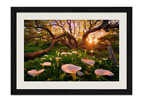 CU.RONG Huge Tree And Calla Lily Wood Frame Poster Home Art Deco Picture Print Framed Painting(12x16 in Black Frame) ()