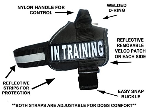 Service Dog Harness Vest Cool Comfort Nylon for Dogs Small Medium Large Girth, Purchase Comes with 2 in Training Reflective Patches. Please Measure Dog Before Ordering (Girth 19-25'', Black) by Doggie Stylz