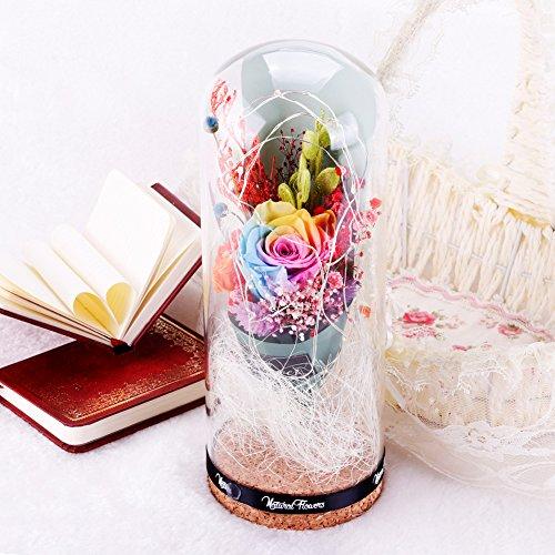 Love Fresh Flowers (Eternal Love Preserved Real Natural Fresh Rose Flowers Glass Cover + LED Light)