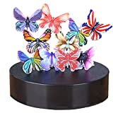 iPhyhe Magnetic Sculpture Desk Toy for Stress Relief and Intelligence Development (Butterflies)