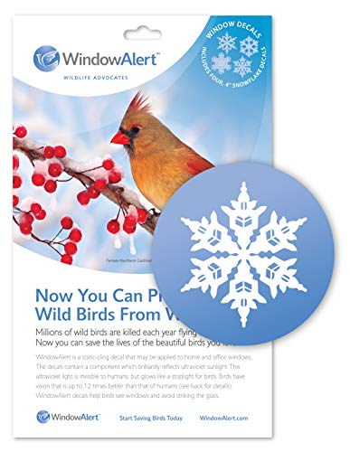 WindowAlert Snowflake Decals]()