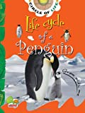 Life Cycle of a Penguin: Key stage 1 (Circle of Life)