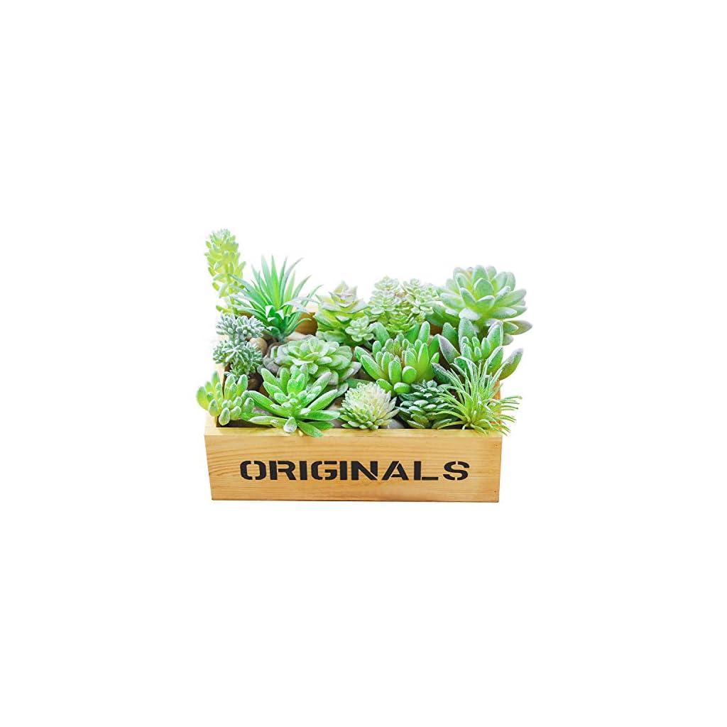 AKITSUMA-Artificial-Succulent-Assorted-Unpotted-Arrangement-14-PCS-Flocking-for-Garden-and-Home-Decoration-Fake-Mini-Desert-Green-Plant
