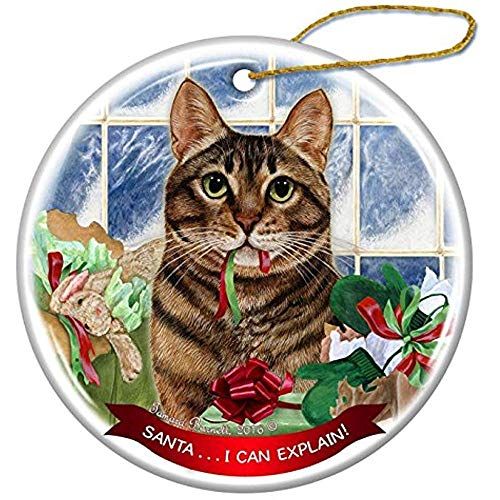 Cheyan Brown Tabby Cat Porcelain Hanging Ornament Pet Gift Santa I Can Explain for Christmas Tree and Year Round
