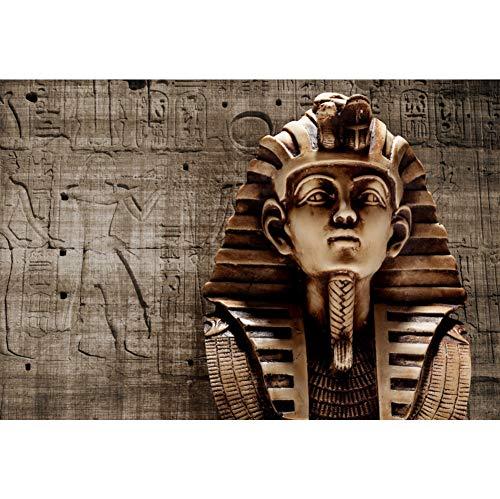 Renaiss 5x3ft Vinyl Ancient Egyptian Theme Photography Backdrop Egypt Pharaoh Fresco Stone Statues Hieroglyphs Carved on The Stone Backdrop Interior Decorations Portrait Photo Studio Props