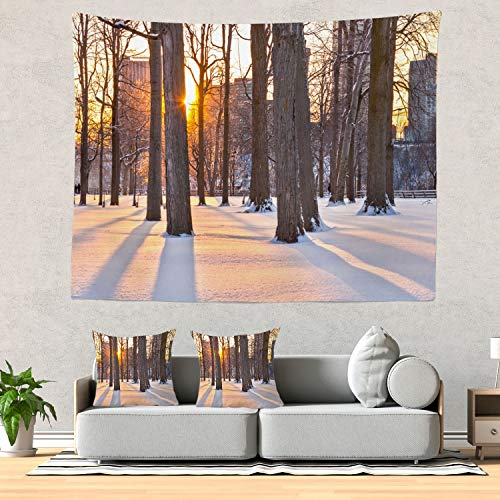 - Batmerry Sunset Tapestry, Fall Trees Autumn Niagara Falls State Park Picnic Mat Beach Towel Wall Art Decoration for Bedroom Living Room Dorm, 51.2 x 59.1 Inches, Brown