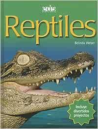 Reptiles (Introductions to Science): Amazon.es: Weber, Belinda: Libros