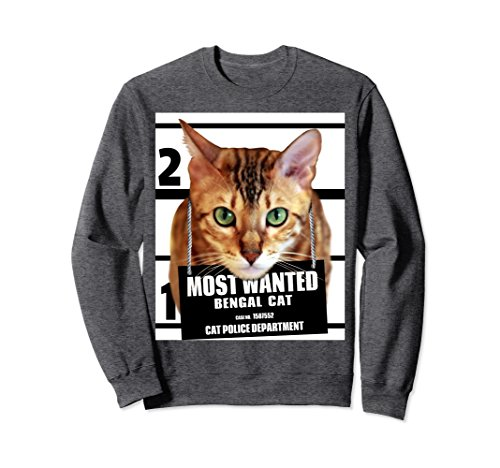 Unisex Most Wanted Bengal Cat Sweatshirt Cute Funny Cat Sweat shirt Small Dark Heather